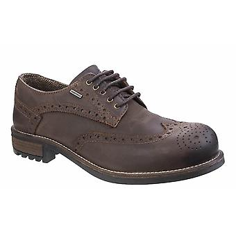 Cotswold men's shoes oxford waterproof brogue brown