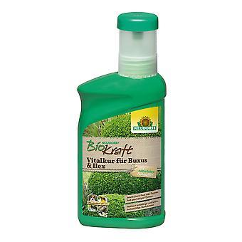 NEUDORFF BioKraft® Vitalkur pour Buxus & Ilex, 300 ml
