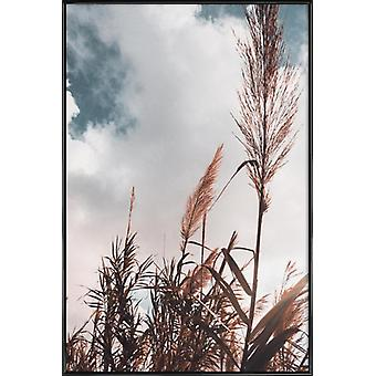 JUNIQE Print - Grass I - Leaves & Plants Poster in White & Brown