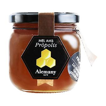 Propolis honey 500 g