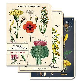 Cavallini Wildflower Dandelion Journal Diary Notebooks x 3
