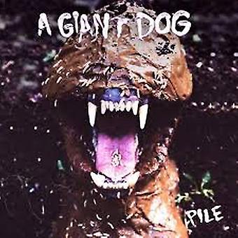 A Giant Dog – Pile Vinyl
