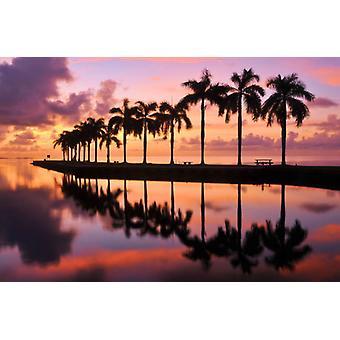 Fondo de pantalla Mural Belleza y la Playa