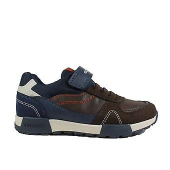 Geox Alfier J846ND Brown/Navy Leather Boys Bungee Lace/Rip Tape Trainers