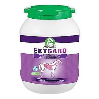 Audevard Ekygard (Horses , Food , Food complements)