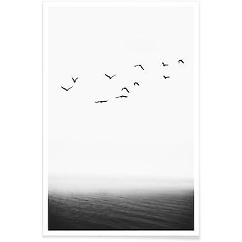 Impression JUNIQE - Forever Free - Oceans, Seas and Lakes Poster in Black and White