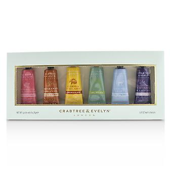 Limited edition hand therapy gift set 233796 6x25ml/0.86oz