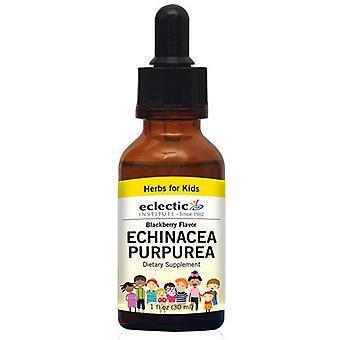 Eclectic Institute Inc kid's Echinacea Purpurea, Blackberry 1 Oz Alcohol gratis