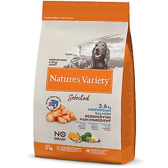 Nature's Variety Selected Medium Adult Grain Free Salmon (Dogs , Dog Food , Dry Food)