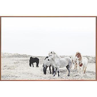 JUNIQE Print -  Wild and Free Horses 1 - Pferde Poster in Cremeweiß & Weiß