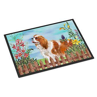 Cavalier Spaniel foråret indendørs eller udendørs Mat 18 x 27
