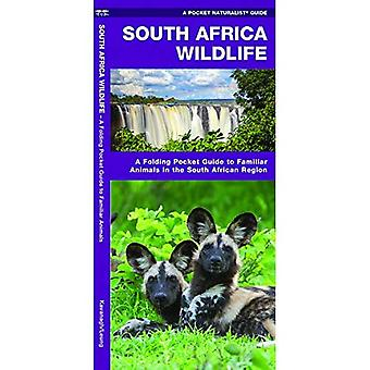 South Africa Wildlife (Pocket Naturalist Guide)