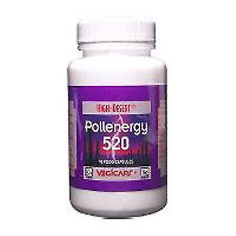 Cc Pollen Pollen Energy, 520 mg, 90 Cap