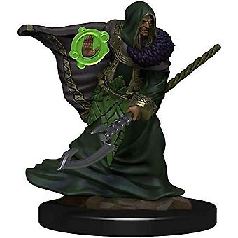 D&D Icons of the Realms Premium Elf Druid Male