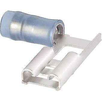 TE Connectivity-156666-1 Klinge Buchse Stecker Breite: 6,3 mm Stecker Stärke: 0,8 mm 90° teilweise isoliert blau 1 PC