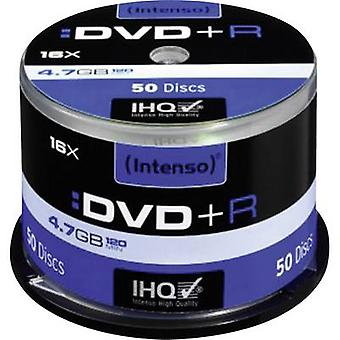 Intenso 4111155 Blank DVD+R 4.7 GB 50 pc(s) Spindle