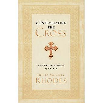 Betrachtung des Kreuzes - eine 40-Tage-Wallfahrt des Gebets von Tricia McCa