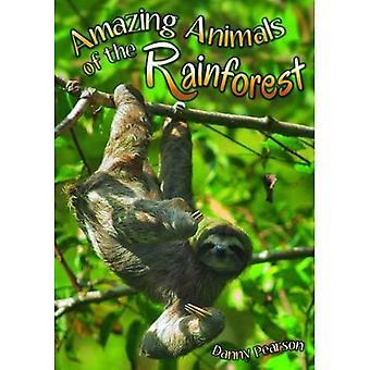 Fantastiska djur i regnskogen (Wow! Fakta (P))