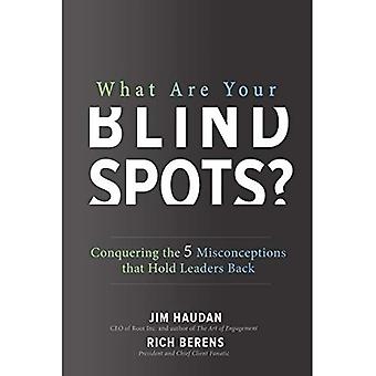 Vad är din blinda fläckar? erövra 5 missuppfattningar att hålla ledare tillbaka