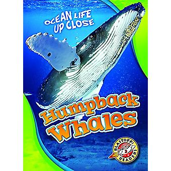 Humpback Whales by Christina Leaf - Christina Leighton - 978162617417
