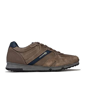 Mens Geox Wilmer Trainers In Grey