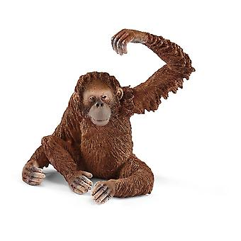 Schleich villi elämä naaras Orangutan lelu kuva (14775)