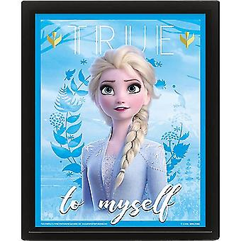 Frozen 2 Framed 3D Holographic Picture