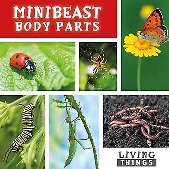 Minibeast Body Parts by Steffi Cavell Clarke