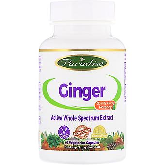 Paradise Herbs, Ginger, 60 capsules végétariennes