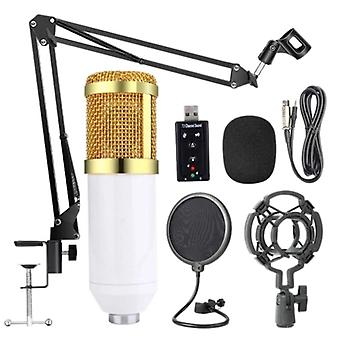 Bm800 Professional Suspension Microphone Kit For Studio Live Stream Broadcasting Recording Condenser Microphone Set For Podcast