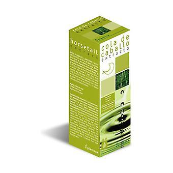 Horsetail Extract 50 ml eteeristä öljyä