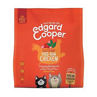 أعتقد بالنسبة للقطط من الدجاج الطازجة الحرة 1,75 كجم