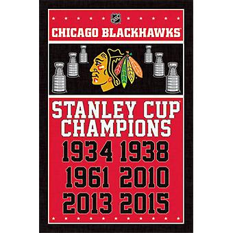 Chicago Blackhawks - Champions 2015 Poster Poster Print