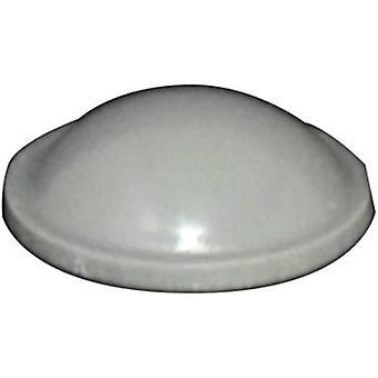 TOOLCRAFT PD2010G Ayak kendinden yapışkanlı, dairesel Gri (Ø x H) 10 mm x 3,1 mm 1 adet(ler)