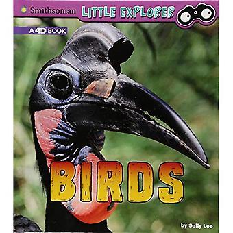 Birds: A 4D Book (Little Zoologist)