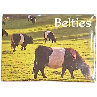 Belties (Scottish Belted Galloways Magnet par Lyrical Scotland