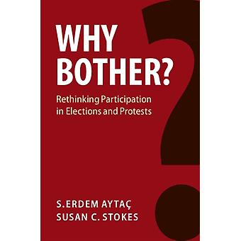 Why Bother by S Erdem Aytac