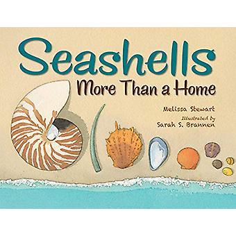 Seashells - More Than a Home by Melissa Stewart - 9781580898102 Book