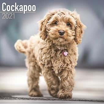 Cockapoo 2021 Wall Calendar by Created by Avonside Publishing Ltd