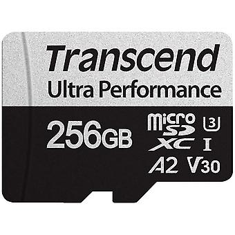 FengChun 256Go microSD mit Adapter UHS-I