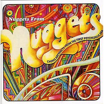 Pépites de Nuggets-Artyfa - import USA pépites de Nuggets-Artyfacts [CD]