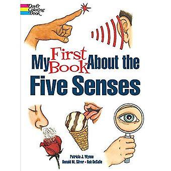 Min första bok om de fem sinnena
