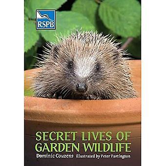 Geheime leven van tuin Wildlife