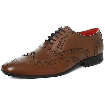 Route 21 M338 5 Eye Brogue Oxford Mens Brogue Shoes  AND COLOURS