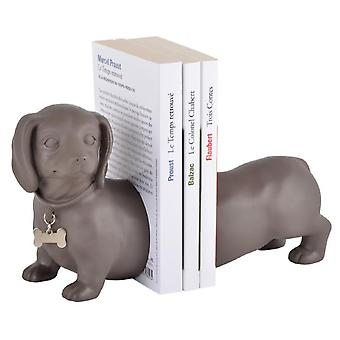 Books Aid Dog Dachshund