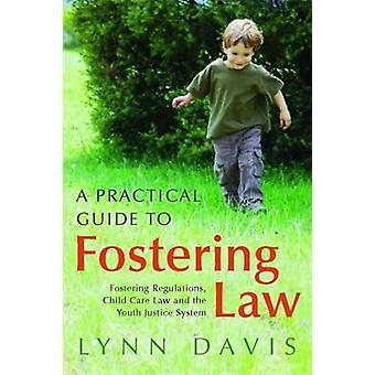En praktisk Guide till att främja lag - främja förordningar - barn bil