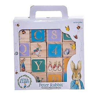 Beatrix Potter Wooden Learning Blocks