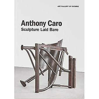 Anthony Caro - Sculpture Laid Bare by Kenneth Brummel - 9781894243926