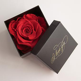 I Love You Gift 1 Eternal Rose Red