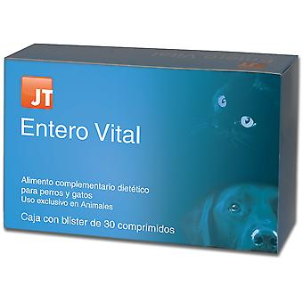 JTPharma Enterovital 30 comprimidos (Dogs , Supplements)